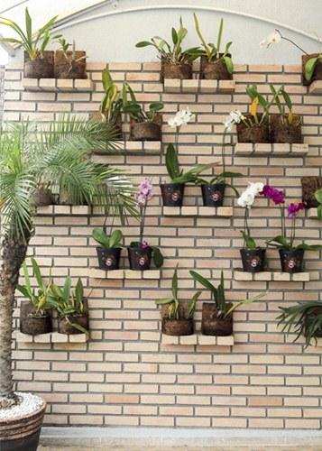 mini jardim vertical : mini jardim vertical: monte de almofadas, o mini jardim vertical e a parede de mini bambus