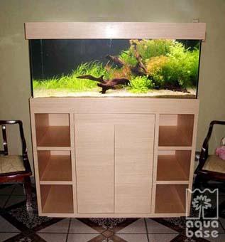 aquárioaquabase5