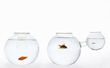 aquáriorodrigobarbadotcom