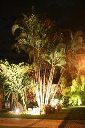 iluminacao-com-par-20-jardim1