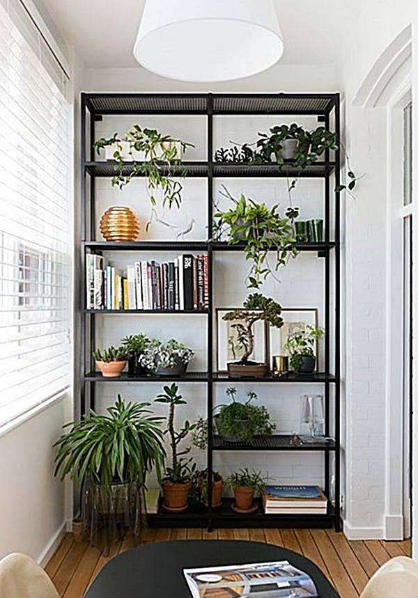 apartmentdietdoor-Plants-tfad