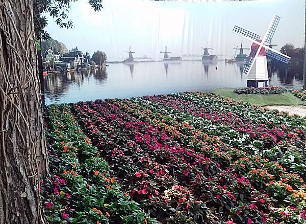 ambiente-19-quintal-holandesmauro-contesini-paisagista