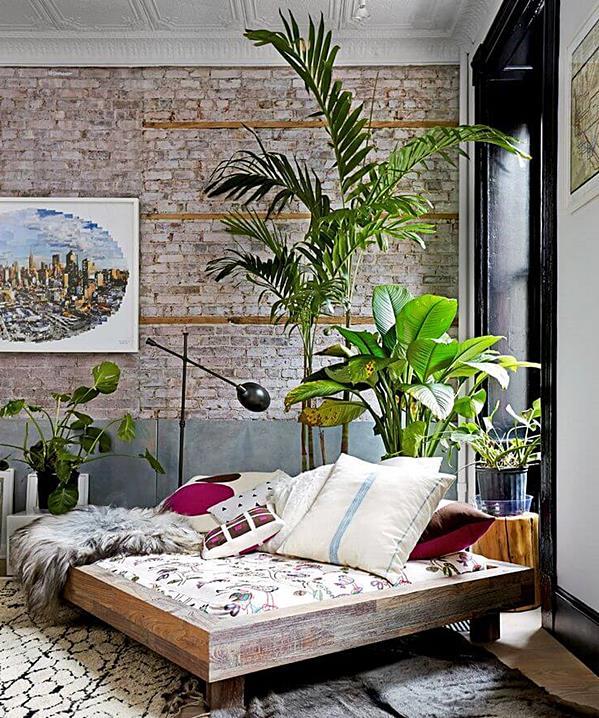 cantinho com plantas e cama