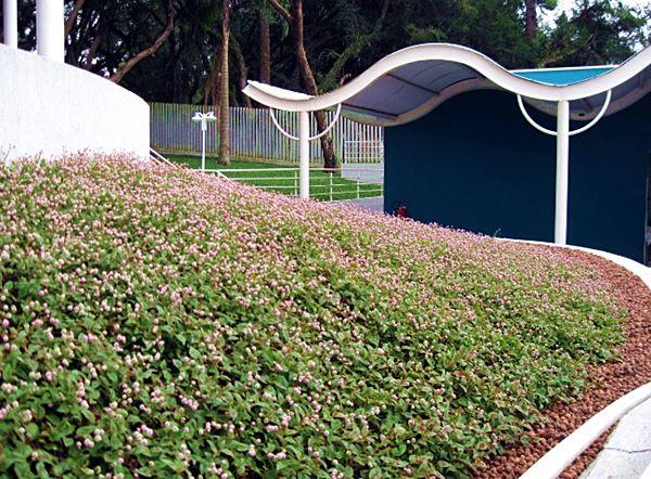 floresculturamix 666x500