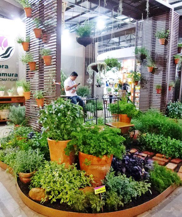 Enflor Garden Fair ervas aromáticas