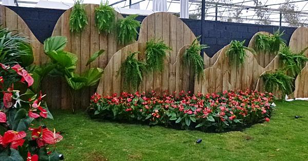 Jardim de entradaP1050575