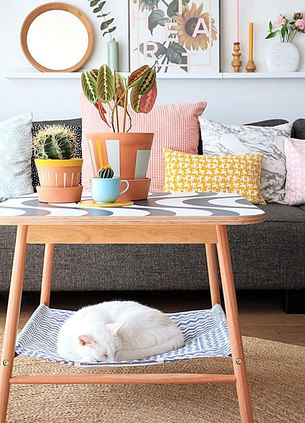 caminha de gato abaixo de móvel