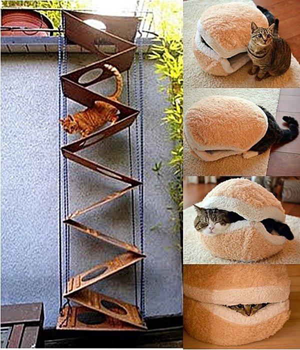 caminha e escada para gatos