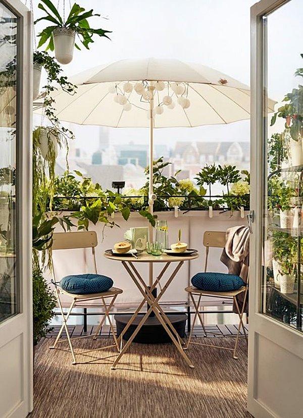plantas para varanda pequena 11