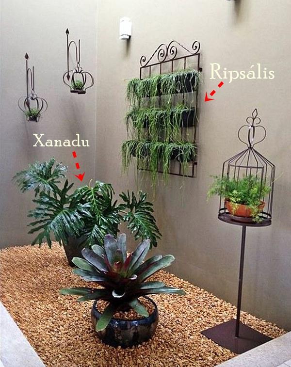 simplichique jardim-de-inverno-09-e1470838015895