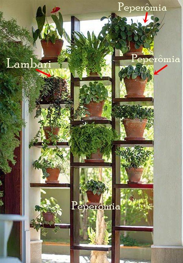 um-jardim-vertical-criativo-na-entrada-da-casa11