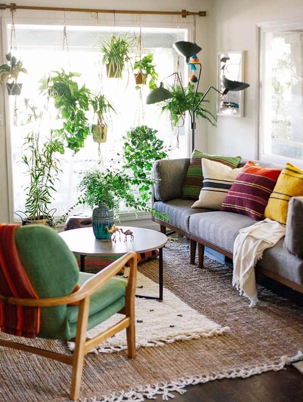 cantinho com plantas na sala