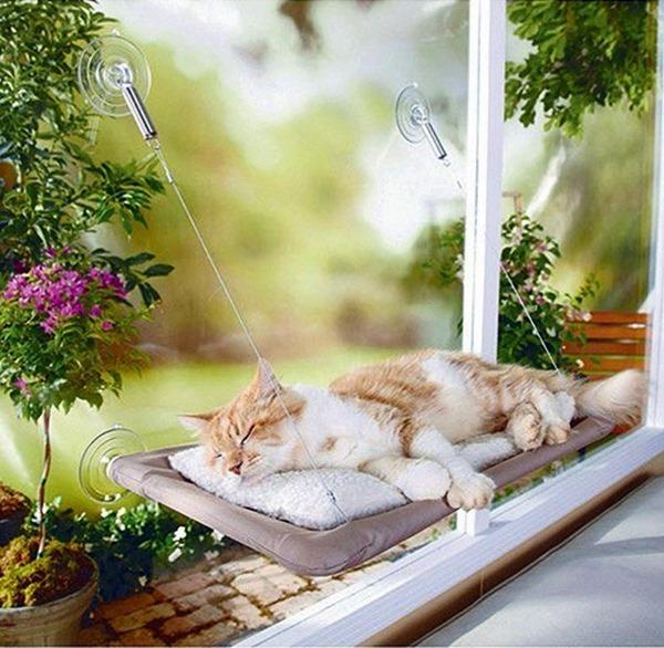 decoração para gatinhos 10
