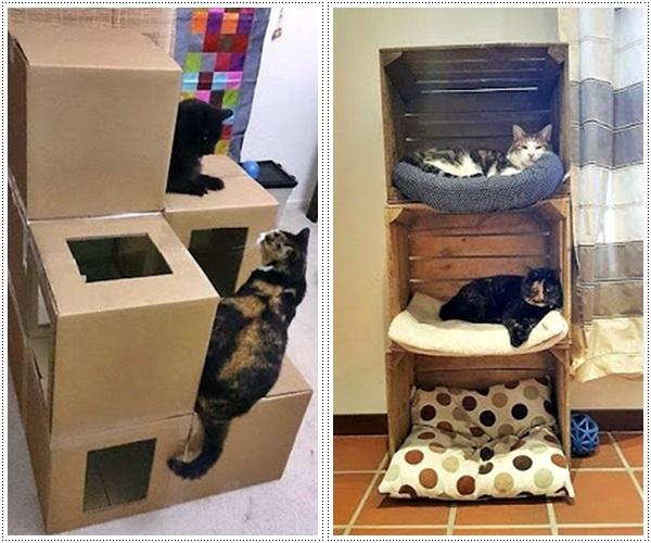 decoração para gatinhos 3
