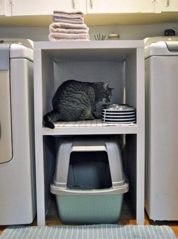 decoração para gatinhos 8