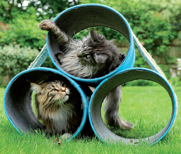 decoração para gatinhos 7
