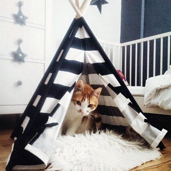 Decoração para gatos