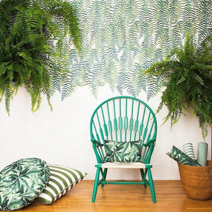 plantas dentro de casa decoração