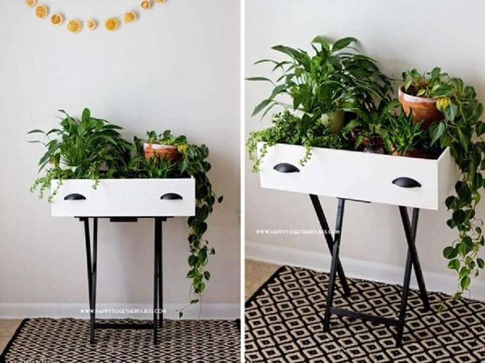 gaveta serve de apoio para plantas