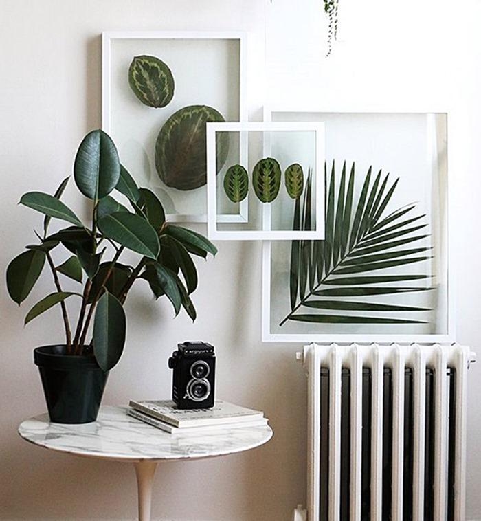 quadros feitos com folhas de plantas no vidro