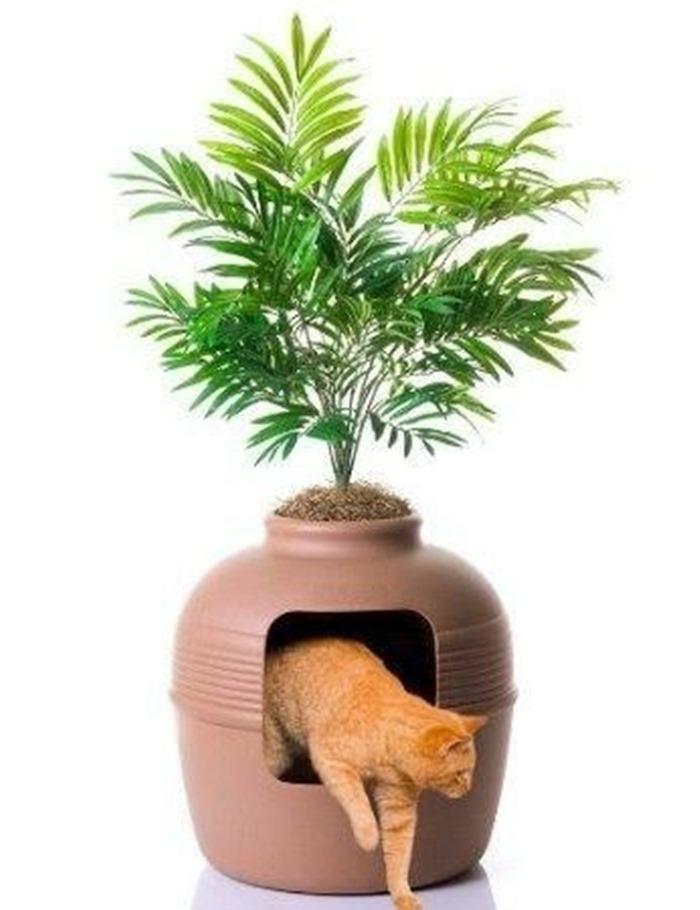 vaso de planta e cantinho para gatos ao mesmo tempo