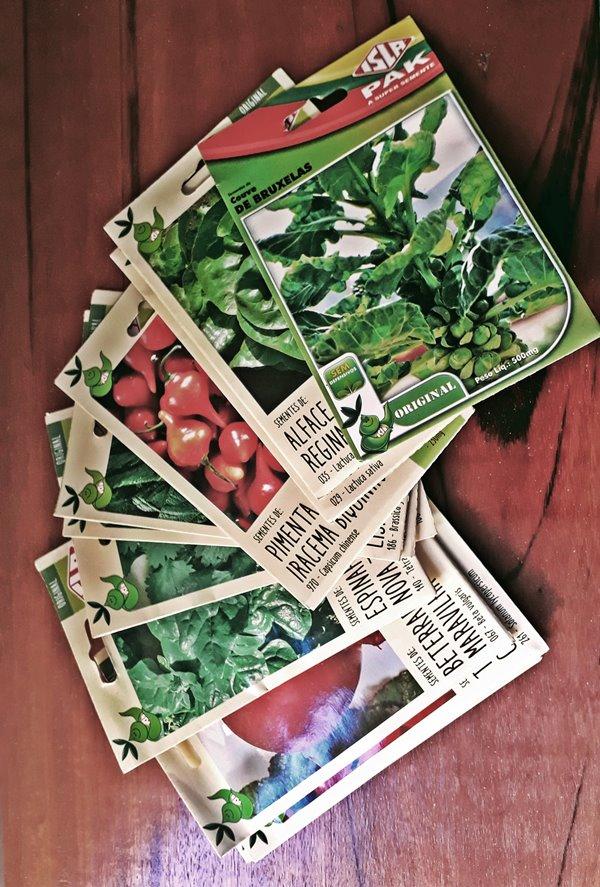 horta caseira -  o que plantar