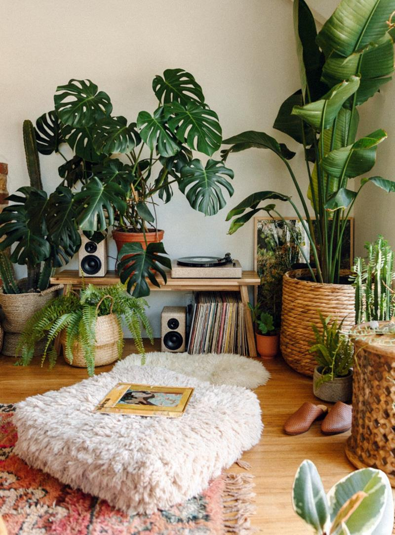 cantinho para relaxar com plantas