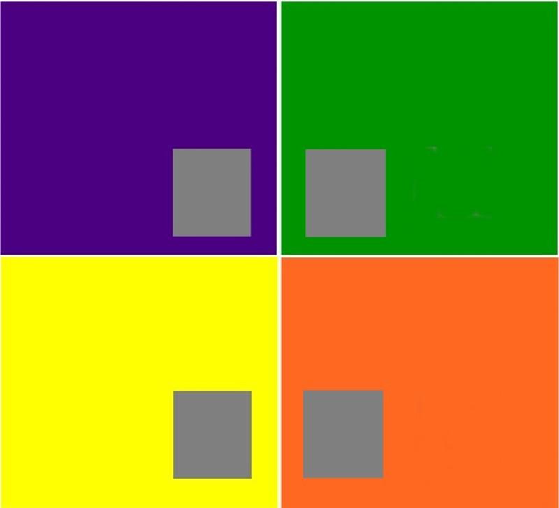 cinza com diversas cores comparação