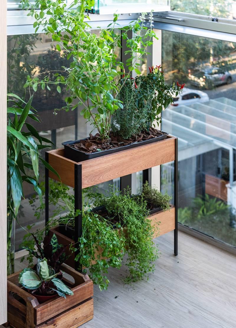 horta caseira na varanda