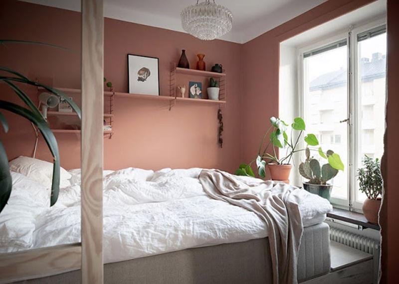 Quarto com parede rosa e plantas