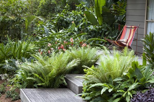 Pequeno Jardim em Estilo Tropical, é possível?